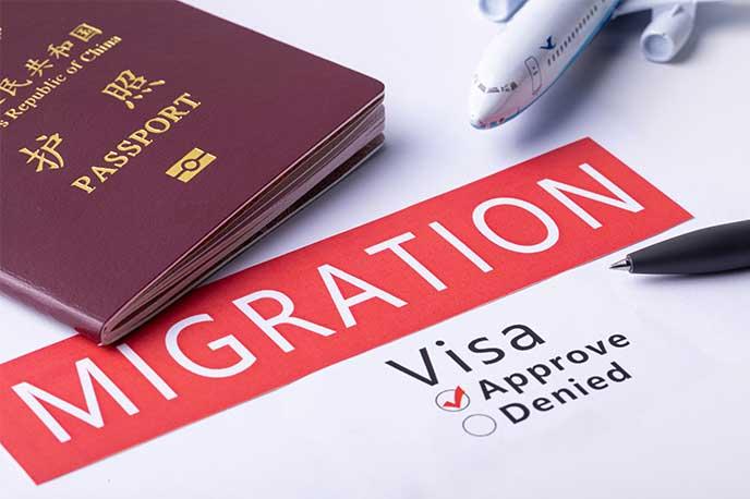 担保移民项目